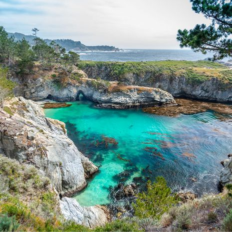 Travel picture of Point Lobos