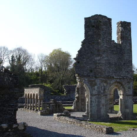 Travel picture of Old Mellifont Abbey