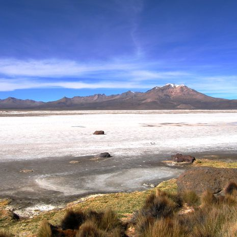 Travel picture of Salar de Surire