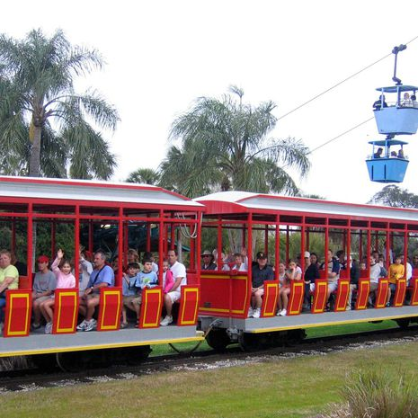 Travel picture of Busch Gardens Tampa