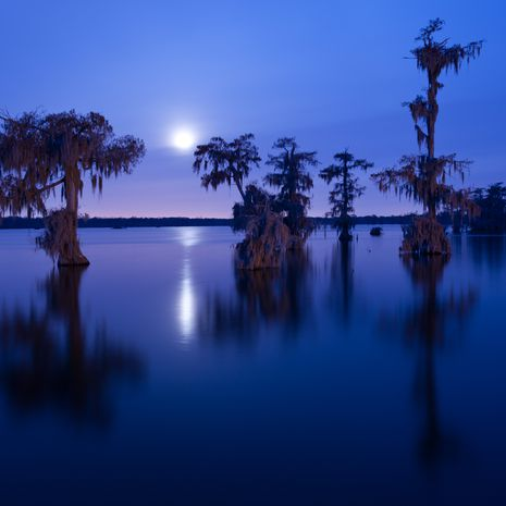 Travel picture of Lake Martin