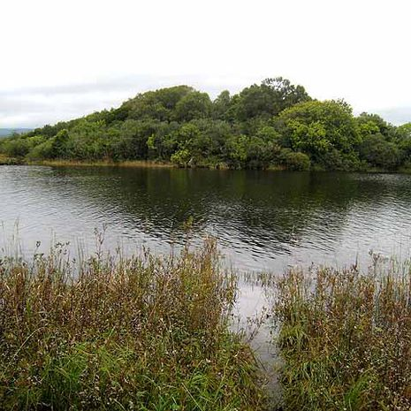 Travel picture of Lough Gill