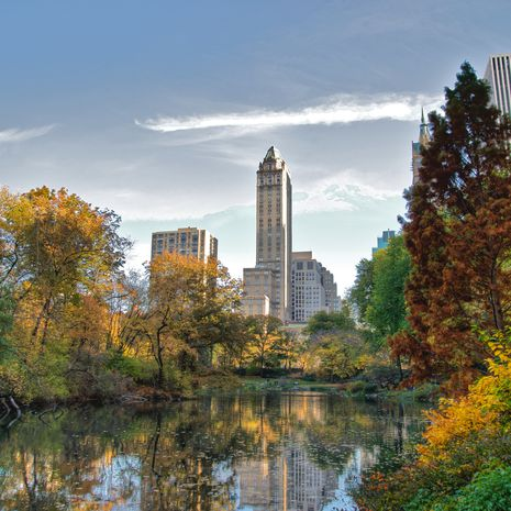 Travel picture of Central Park