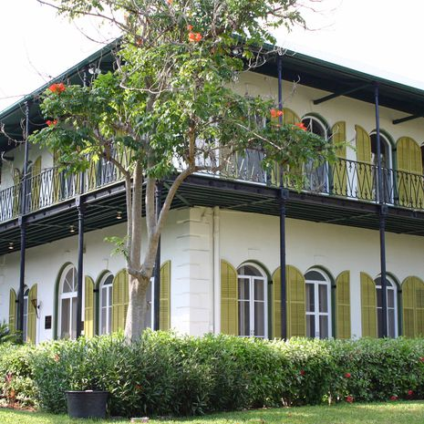 Travel picture of The Ernest Hemingway Home and Museum